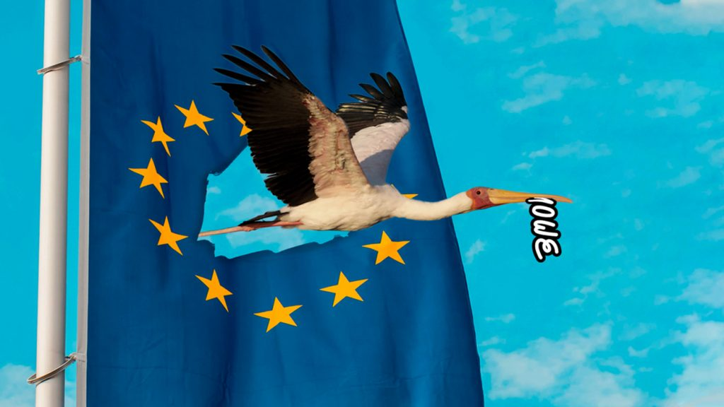 illustration for the blog of a bird flying through the UE flag