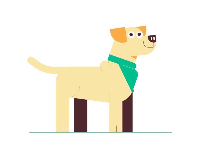 illustration for an explainer video animation made for Wag, a dog walking service. It shows a dog
